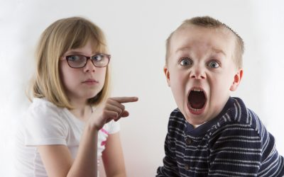 The Sibling Effect: The Most Overlooked Factor in Personality Development